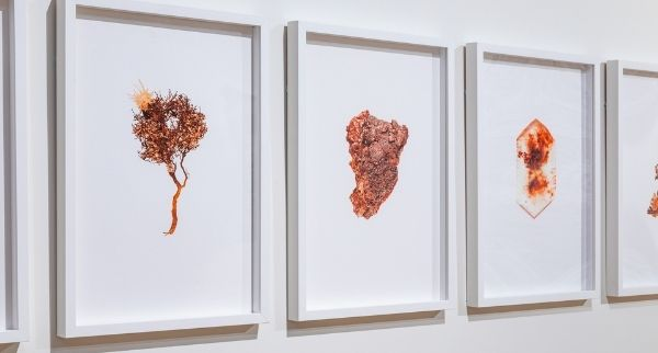hanging artwork in gallery